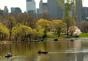 boats lake in Central Park NYC