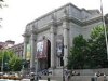 American Museum of Natural History (AMNH)
